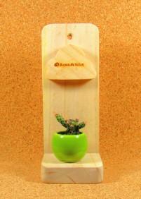 Repisa con Mini Planta